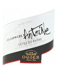 Les Caprices d'Antoine - Côtes du Rhône Blanc 2015