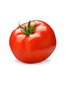 Jus de Tomate 20cl