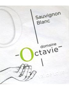 Touraine Sauvignon 2017