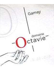 Touraine Gamay 2018