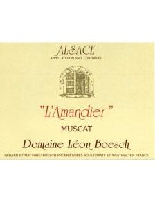 """Muscat - """"L'Amandier"""" Bio 2011"""