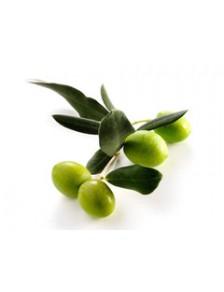Huile d'Olive Fruité Vert Bio du Château Romanin